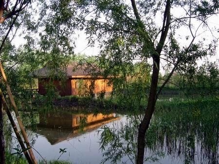参观溱湖湿地风景区,亲密接触大自然