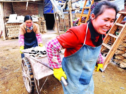 农村打扫雪-广西资源县农民清理被冰雪压垮的房屋.图片