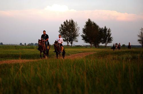 几名游客在包头市赛汗塔拉生态园骑马游玩