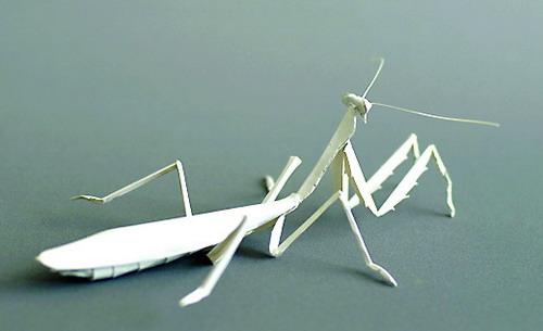 立体螳螂的折法图解