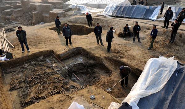 截至目前,发掘面积近9000平方米,发现西周早中期城址,西周贵族墓葬