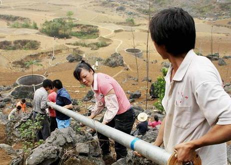 东兰县泗孟乡有多少人口(3)