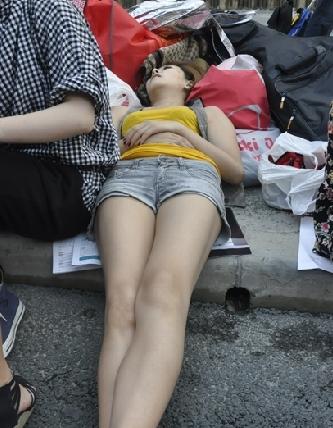 记者总结了网民们的部分观博文明啄木鸟帖