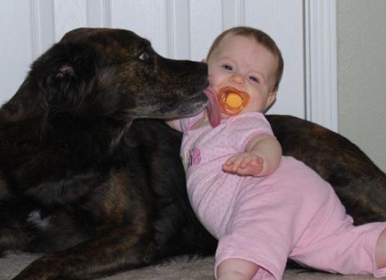 孩子与小动物的温馨瞬间